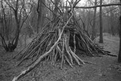 The Hut (Mark Dries) Tags: markguitarphoto markdries olympus xa fomapan foma400 supergrain rollei 35mm film filmphotography filmcamerainyourpocket