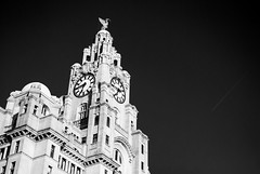 [B&W] Liver-Building with BA178 from JFK (DJMads) Tags: liverpool albertdocks liver liverbuildingliverpool blackandwhite smokehouse liverpooldocks