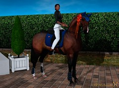 2nd Place (Aviaya Nox) Tags: horse sl secondlife secondlifephoto secondlifestyle photography catwa addams teegle blackhawk heights cross country competition tack