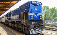 HŽ PP 2044 017 na Zagreb GK (deniob86) Tags: hrvatska hrvatske zeljeznice 2044 017 zagreb glavni kolodvor voz vlak train railway photography diesel power mala karavela stanica