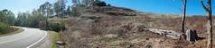 Australian Capital Territory III (bbxtt) Tags: landscape australia canberra act road bush autumn