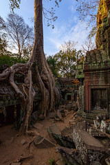 Over grown Ta Phrom Temple, Angkor, Cambodia (Kenneth Back) Tags: jungle morning canon5dsr sunrise canon angkorwat siemreap landscape stonewall colors ancient cambodia roots temple taphrom krongsiemreap siemreapprovince kh