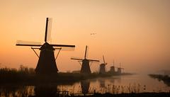Magich hour at Kinderdijk (fDacic) Tags: sky landscape sunrise morning water reflection nature travel sun cityscape golden grass netherlands peaceful countryside windmill dutch kinderdijk goldenhour