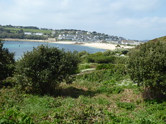 18 April 2017 Scilly (36) (togetherthroughlife) Tags: 2017 april scilly islesofscilly