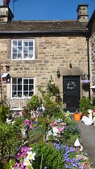 Plague Cottage, Eyam   -   April 2017 (dave_attrill) Tags: plague cottage mary hadfield family died george vicars ornamental front garden eyam derbyshire peak district hope valley 11th century village bubonic breakout 1665 rev william mompessom anglo saxon roman lead mining 260 deaths main road rd architecture outdoor stonework historic mid 17th cottages april 2017 national park white mines domesday book
