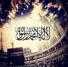Imam Helmi Agha, Kalima (Imam Helmi Agha) Tags: imam helmi agha muslim scholar kaaba makkah mosque spiritualism peace polar quran islam owl cubs loin