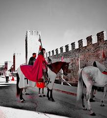 Festa medieval de Montblanc (carlesbaeza) Tags: cavall caballo horse medieval catalunya catalonia tradicions tradición travel
