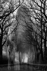 Can you see me? (Brown_Sugar4life) Tags: blackandwhite nature girl exposure child little creepy spooky ghosts