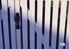 Juego de lineas (1BlancaPhotography) Tags: light sky naturaleza sun luz nature landscape photography nikon colours cielo paintingwithlight crepusculo juego fotografía juegosdeluz collores