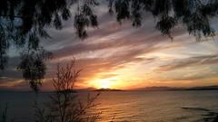 Sunset kavouri Athens (spicros78) Tags: sunset sea sun tree walking peace shot greece capture attica kavouri thisphotorocks lgl9iimobilephone