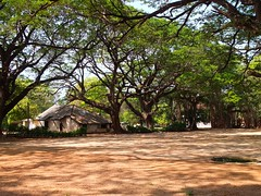Sri Lanka Trincomalee (dover.rebecca) Tags: life travelling beach coast back packing east bums nomad everyday