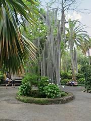 Garden entrance (Linda DV (away)) Tags: park nature canon geotagged canarias tenerife botanicgarden botanicalgarden canaryislands 2014 laorotava geomapped lindadevolder jardndeaclimatacin garaaa