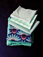 mint (andrea creates) Tags: echinacea mint june14 fabricstash annamariahorner prettypotent