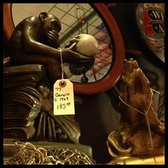 *              Darwin vs Dürer             * ________________________________*           Uncommon Objects          * *       1512 S Congress Avenue     * Austin, Texas (veryslowtimetraveler) Tags: cameraphone old sculpture vintage austin skull monkey sketch store hands day texas with calendar display time mit antique praying sunday thinker objects charles darwin books daily study german ape vs annual chimpanzee 365 hugo date everyday viewing collect rodin app sculptor contemplating versus hände pictureaday 173 affe durer iphone dürer albrecht uncommon schädel apostle betende rheinhold iphonography iphoneography 02014 fxphotostudio veryslowtimetraveler