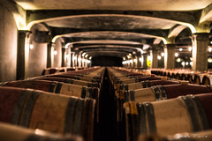 Wine basement (A.Fauth) Tags: color nikon darkness wine bordeaux smith lafitte cave vin chateau haut d610 gironde