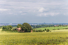 Fields of Green (Lee532) Tags: landscape corn nikon farm north lincolnshire fields agriculture humber d610