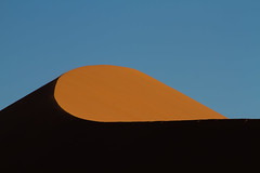 Detail of a red sand dune in the evening light (Circum_Navigation) Tags: africa morning light shadow red orange detail tree nature field landscape evening sand desert top dunes dune 45 curve namibia sossusvlei namib dune45