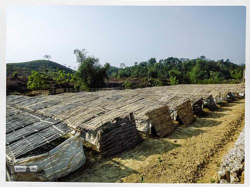 Madhabkunda Eco Park & Water Fall, Sylhet-8.jpg