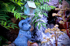 L'il Bear on Watch (talenawinters) Tags: statue garden stream postcard birdhouse teddybear waterfeature gardenstatuary