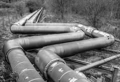 industrial Northwich 03 HD mar 17 (Shaun the grime lover) Tags: cheshire northwich winnington hdr industrial landscape monochrome woodland pipes pipelines steam