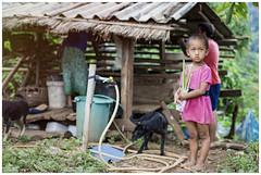 Life (Dani Carmona) Tags: life thailand mountain town asia chiangmai dog girl children