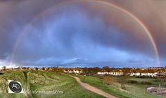She breaks for rainbows (alun.disley@ntlworld.com) Tags: harrisonparkwallaseynewbrighton weather rainbow panorama wirral meteorology houses landscape nature merseyside clouds publicparks openspaces paths