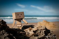 Danbo de visita en la playa de Roche (Geno G.) Tags: danbo danboard yotsuba figurecollection figma revoltech toy toyphotography explore playa exterior roche cádiz