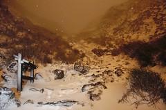 雪//狂//凍 (K_HAN_K) Tags: 台灣 taiwan 七星山 陽明山 下雪 清晨 霸王寒流 夜衝 熱血青春 雪景 凍 94狂