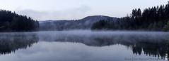 morning fog (alamond) Tags: morning fog lake water blue forest wood mist reflection canon 7d markii mkii llens ef 1740 f4 l usm alamond brane zalar bluehour