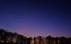 DSCF6974 (TARmAdAmA) Tags: sunrise morning cold coldmorning winter throwback pinksky trees rhine germany fuji x100 new newphotographer newtoflickr