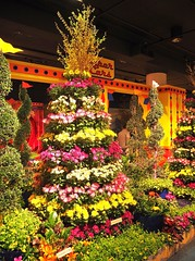 Macy's Flower Show (Brule Laker) Tags: chicago illinois flowers macys marshallfields downtown olympusom