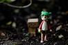 365.16--Lost (Leijachan) Tags: toys shoddy 50mm beginner danboard danbo