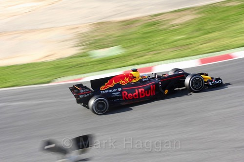 Daniel Ricciardo in his Red Bull in Formula One Winter Testing 2017