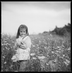 my little flower (ukke2011) Tags: hasselblad503cw cfe8028 ilforddelta100 selfdeveloping rodinal film pellicola 6x6 square 120 bw portrait mediumformat flowers