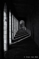 Brompton Cemetery Perspective (Ivan van Nek) Tags: nikon d3200 nikond3200 perspectief schaduw shadows angleterre england engeland bromptoncemetery westbrompton chelsea unitedkingdom greatbritain london londres londen blackandwhite monochrome zwartwit perspective derailinator architecture architektur architectuur