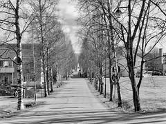Hornintie, Halikko (m.pertti) Tags: landscape monochrome blackandwhite koivukuja street halikko salo finland