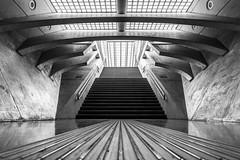 Liege Guillemins (Ellen van den Doel) Tags: liege guillemins trainstation architecture luik belgium belgie modern calatrava black white lines abstract building fine art april 2017 fotoclub weekend liège wallonie belgië be