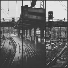 bahnhof triptychon (digital_underground) Tags: blackandwhite hamburg germany railway station hbf bahnhof regen rain schirm umbrella