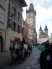 Prague (2011) (alexismarija) Tags: prague czechrepublic horses carriage church our before churchofourladybeforetýn