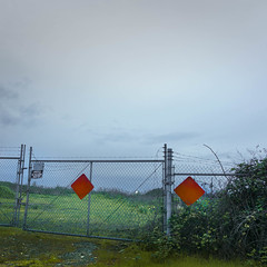 Pastorale (rosenunezsmith) Tags: brambles night eugene chainlink blackberries notrespassing fences endofroad roadsigns photos4pny lot oregon pacificnorthwest suburbanlandscape vacantlot sky bluehour sign signs industrial field