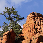 Pinion and Red Rock thumbnail