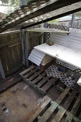 cat enclosure - height (StephenMitchell) Tags: catrun kennel bitsandpieces pallets woodwork behindgarage