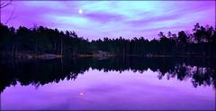 By the lake. (Papa Razzi1) Tags: 8991 2017 099365 lake sweden twilight april spring xperiax