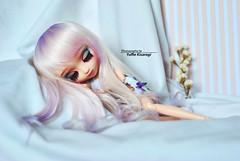 Sweet Dreams, my Daphire (·Yuffie Kisaragi·) Tags: doll pullip papin custom akai arashi daphire obitsu rewigged rechipped