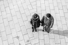 separated. (P. Zimmer) Tags: blackandwhite bw bnw black white schwarz weiss sw schwarzweiss noiretblanc monotone monochrome monochromatic people menschen urban stadt street streetphotography deutschland germany duesseldorf fuji xpro2 pattern light licht shadow schatten