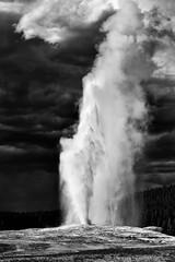 Old Faithful (wawrus) Tags: oldfaithful geyser yellowstone national park wyoming montana eruption geothermal cloud bw black white duotone landscape america usa leica summicron 50mm sony a7rii teton plume nik grain silverefexpro