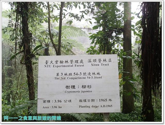 南投溪頭自然教育園區台大image015