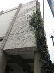 IMG_4687 (Mud Boy) Tags: school japan tokyo visit eastasia internationalschool nihonkoku nipponkoku northeastasia tokyometropolis largestcityproperinthedevelopedworld tel0338220741 thekaiseiacademy thekaiseijuniorandseniorhighschools httpwwwkaiseigakuenjpkaiseihpenglishhomepagei