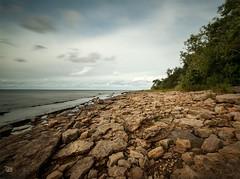 Hllekis, Kinnekulle (tittiyttersj) Tags: beach sandstone rocks vnern kinnekulle hllekis sandstensklevar