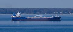 Tanker Bit Okland in Øresund (frankmh) Tags: ships tankers øresund